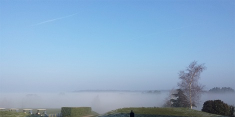 A misty start over the Wensum Valley grounds, so beautiful.