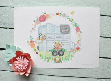 Frog & Pencil Illustration of The Little Horse Box